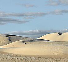 Lancelin Sand Dunes - Western Australia by Bev Woodman