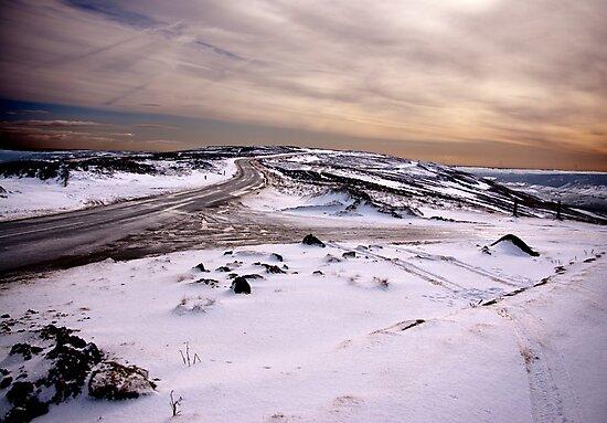 Winter on the Moors by Trevor Kersley