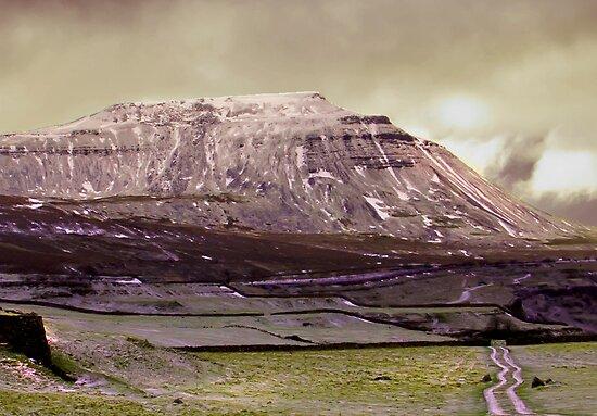 Ingleborough in the Yorks Dales by Trevor Kersley