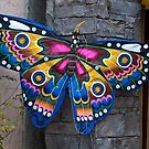 Blue butterfly kite by Ann Reece
