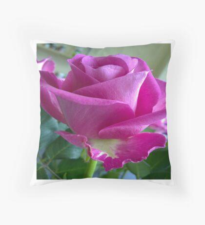 Kingsbury Rose Throw Pillow