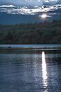 Sunset Paddler - Kennebec Lake, Ontario - Infrared by Debbie Pinard