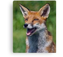I love Jokes! Tell me Another!!! ;o) Canvas Print