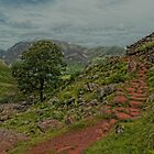 Path to Red Pike, Lake District by JMChown