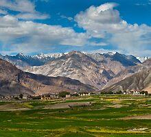 Nubra Valley-5/2011 by Mukesh Srivastava