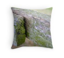 A Fence with Stile Throw Pillow