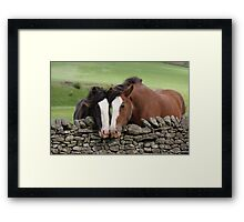 Two Shire Horses - Moffat Framed Print