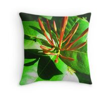 Like a red candlestick in the morning sun Throw Pillow
