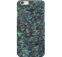Abalone Shell | Paua Shell iPhone Case/Skin