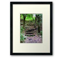 Fluffy Forest  Framed Print