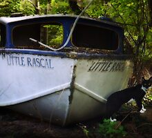Little Rascal by Jay Taylor