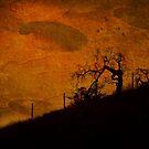 Devil's Land by zzsuzsa