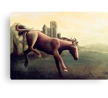 Horse Under Yellow Sky Canvas Print