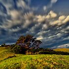 dramatic landscape by nicunickie