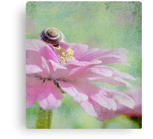 Snail on Petals  Canvas Print