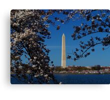Washington DC At Its Best Canvas Print