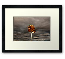 Toasted Marshmallow Framed Print