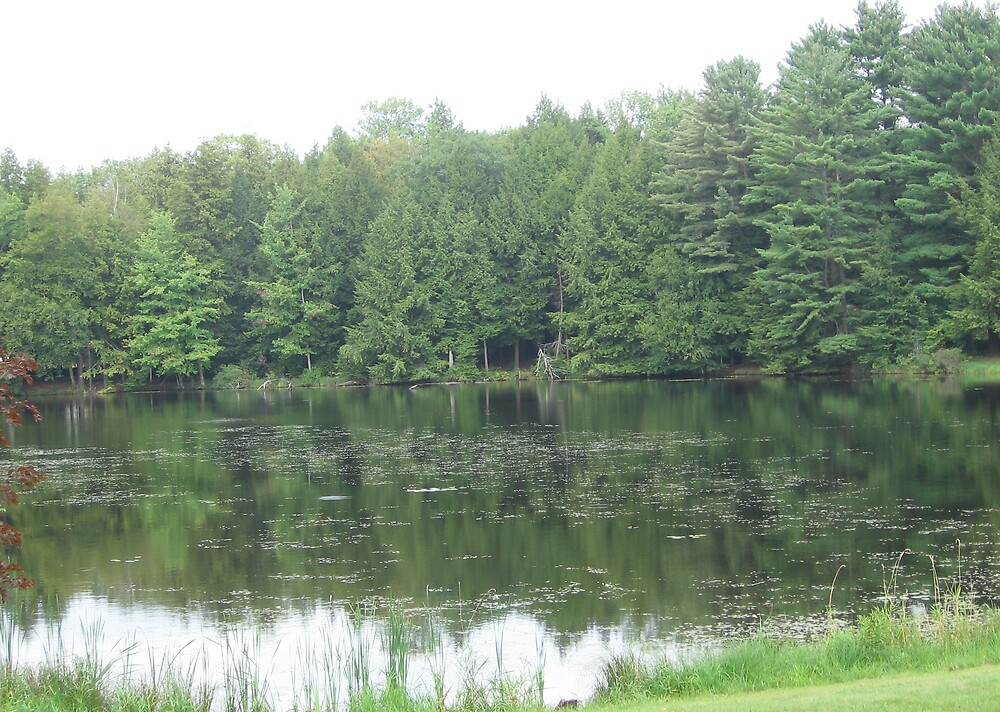 Camp Woodhaven, Galway, NY by BagLady