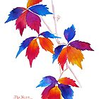 Autumn Kaleidoscope by Pat Yager