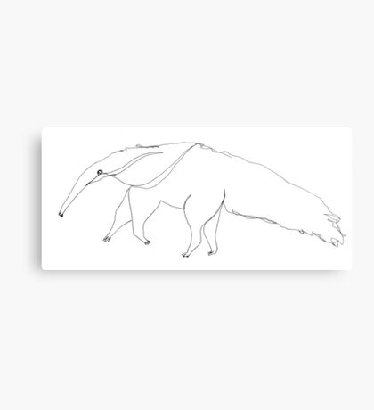Arnie the aardvark invites you to the Web of Whimsy Canvas Print
