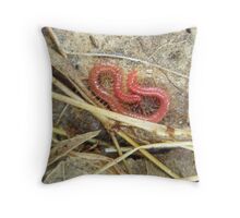 Red Soil Centipede - Strigamia Throw Pillow