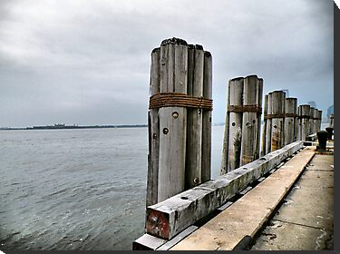 Pilings by joan warburton