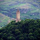 William Wallace Monument, Scotland.......!      by Roy  Massicks