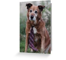 """""""Dressed in my Best"""" Greeting Card"""
