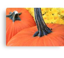 Thanksgiving Pumpkins and Flowers Canvas Print
