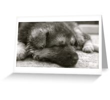 Time For A Nap Greeting Card