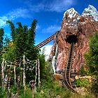 Expedition Everest by Rechenmacher
