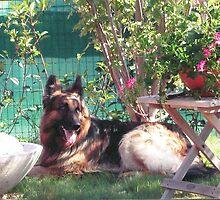DEVIL e il suo giardino... by Guendalyn