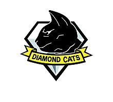 Diamond cats Photographic Print