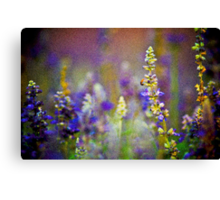 Certainly...a camera can be the Impressionists created ...:) Canvas Print