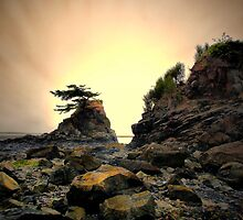 At Any Moment ~ Oregon Coast ~ by Charles & Patricia   Harkins ~ Picture Oregon