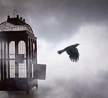 The Free Bird by Louise Docker