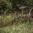 Rake of the Meadow by StoneAge