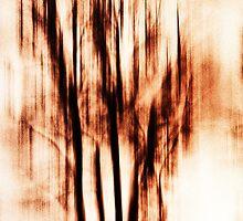 shadows of trees II by novopics
