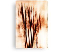 shadows of trees II Canvas Print
