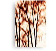 shadows of trees III Canvas Print