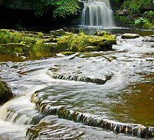Walden Beck and Falls by Andrew Leighton