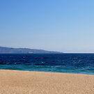 Viña del Mar Chile by Daidalos