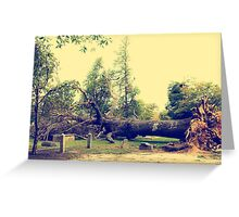 Mother Nature strikes Greeting Card