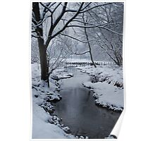 Yankee Hill Stream, In Winter Poster