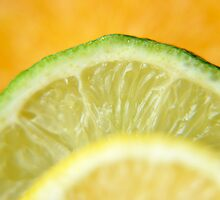 Citrus series 1 by rhian mountjoy