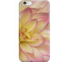 China Doll Dahlia iPhone Case/Skin