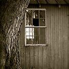 Paula's old farm shed by Jennifer P. Zduniak