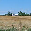Barn in Field in Pennsylvania by Jennifer P. Zduniak