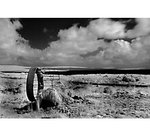Cow Feeder - Carrowmore Lake, Mayo Photographic Print