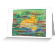 Fluffy Ducky in the Water Greeting Card